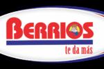 Berrios Logo
